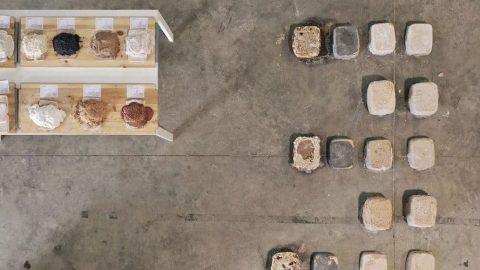 Image for: Il cemento dal sale vale un Leone d'oro
